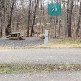 Blackwater Falls SP Campground Site 38