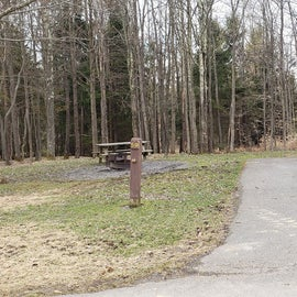 Blackwater Falls SP Campground Site 59