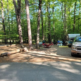 Overview of campsite. A bit of a downhill angle to the site, but nothing that couldn't be worked out.
