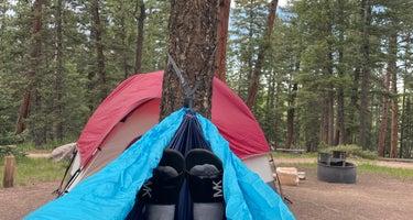 Springdale Campground