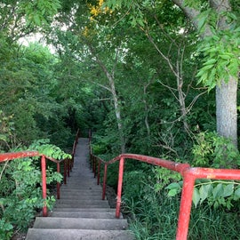 Trail that surrounds the lake. (watch out for spiders!)
