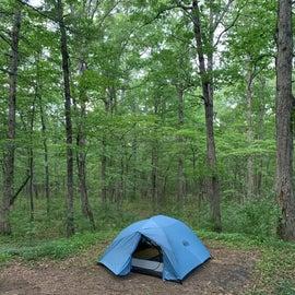 tent backdrop