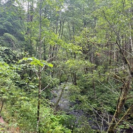 The hike to Green Peak falls