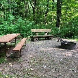 Nice log benches