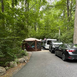 Spacious Wooded Sites - Red Carpet