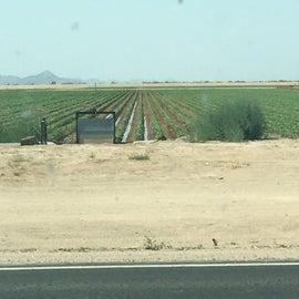 Farmland across the road