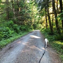 walking along mountain loop
