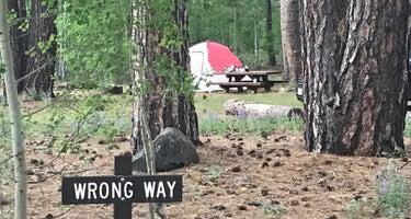 Bogard Campground