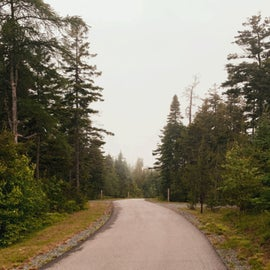 One of the campground roads