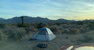 Mojave Cross Dispersed
