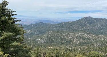 Tamarack - Mt San Jacinto State Park