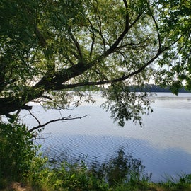 A view of Albert Lea Lake from our hike.