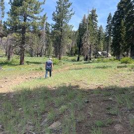 trail to lake nice hike