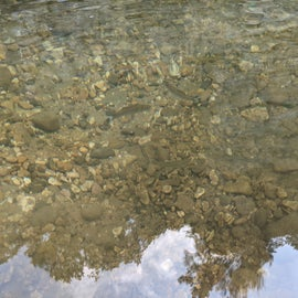 fantastic clear water, watched the fish swim around