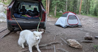 Lincoln Creek Dispersed Campground