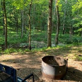 Campsite C19 fire pit