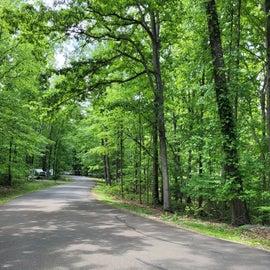 Pine Ridge Loop Rd