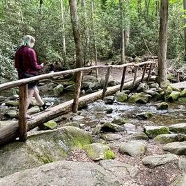 bridge to the waterfall
