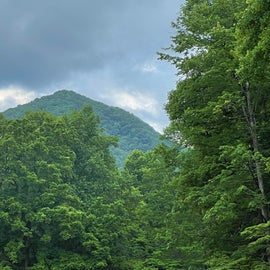 View of the mountain from the road thru the campground