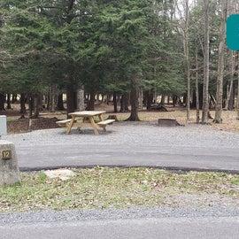 Canaan Valley Resort Site 12