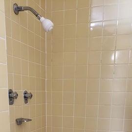 Canaan Valley Resort Shower