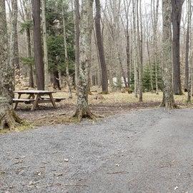Canaan Valley Resort Site 22