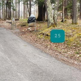 Canaan Valley Resort Site 25