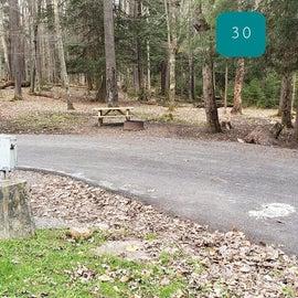 Canaan Valley Resort Site 30