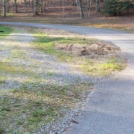 Little Beaver State Park Site 23