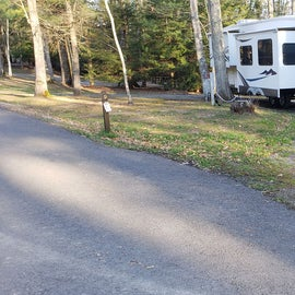 Little Beaver State Park Site 9