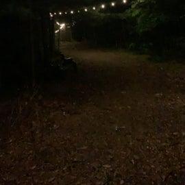 path lit up at night