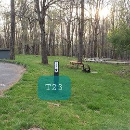 Rocky Knob Site T23