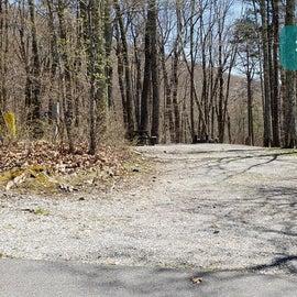 Chestnut Hollow Horse Camp Site 21