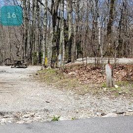 Chestnut Hollow Horse Camp Site 16