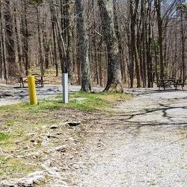 Chestnut Hollow Horse Camp Site 11