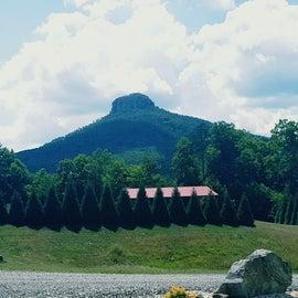 Pilot Mountain view