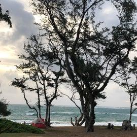 A loop beachfront sites