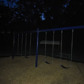 Traditional Swings and none of them are for babies/toddlers.  They do not have an accessible swing for those needing more core supports.