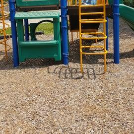 Playground photos