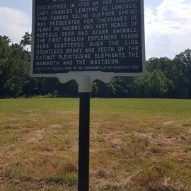 Big Bone Lick Historical Sign