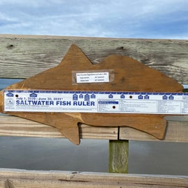 When you catch a fish, you'll have to check its size up against this ruler!