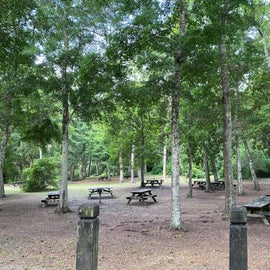 Several picnic areas just ripe for the taking!
