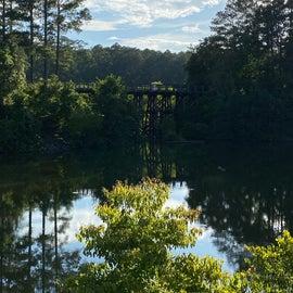 Mirror reflection on this lake