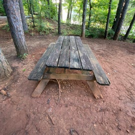 A picnic table unlike any other!