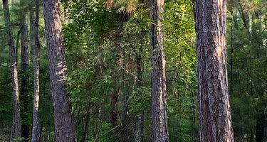 Hickory Knob State Park