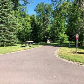 larger grassy sites
