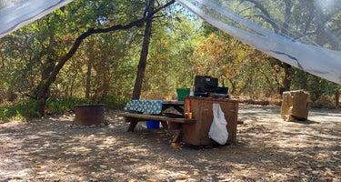Bothe-Napa Valley Ritchey Creek Campground