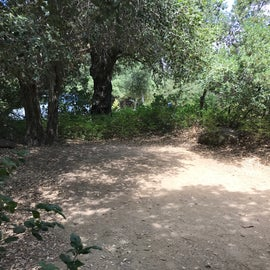 View of the part of site 68 where we pitched our 4-person tent. Leaves provided some cushion, but right beyond the bushes is parking, so the headlights got slightly annoying.