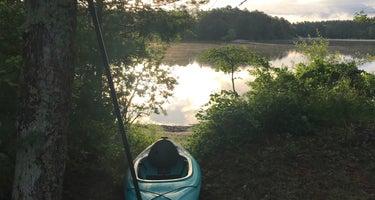 Curlew Pond - Myles Standish State Forest