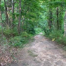 walking trail on premises